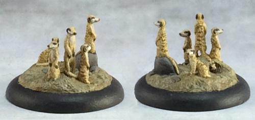 03713 Meerkat familiars (e Andrew Pieper, p Martin Jones)